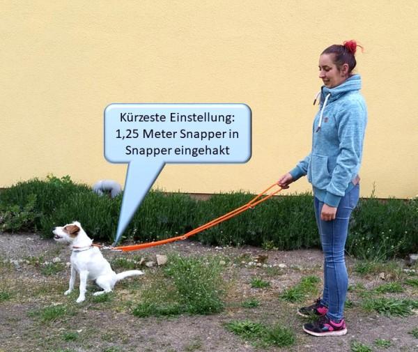 Hundeleine mit 4 festen Längen_1