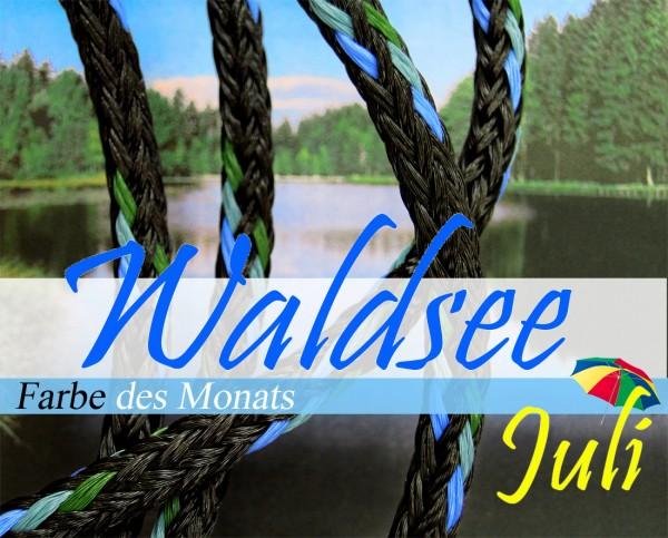 Waldsee - Farbe des Monats