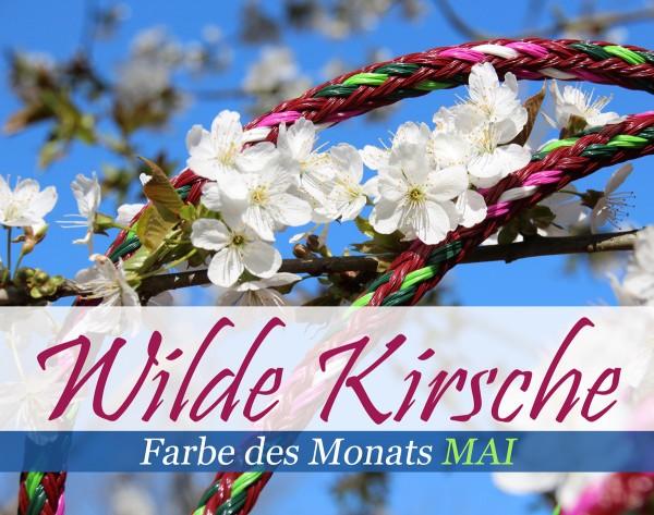 Wilde Kirsche - Farbe des Monats (Mai)