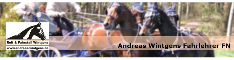 Andreas Wintgens