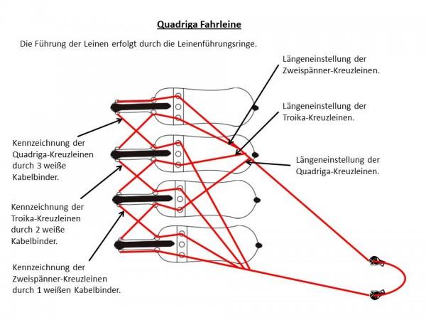 Vierer-Kreuzleine (Quadriga) Arbeitsleine