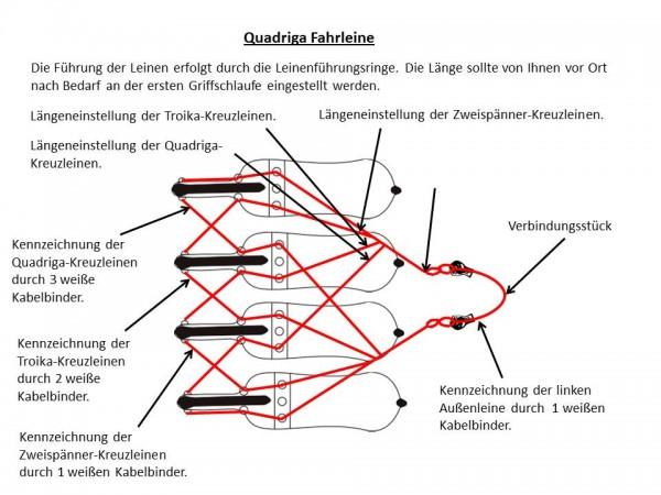 Quadrigaleine
