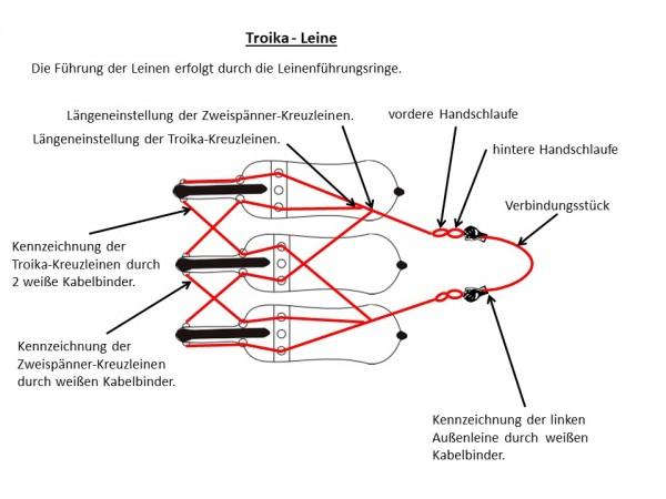 Troikaleine