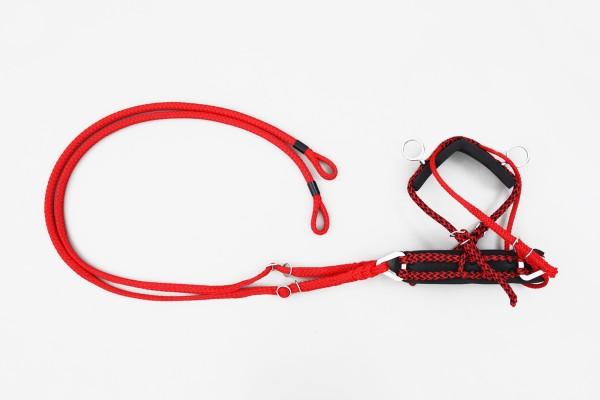 ESEL - Brustblatt mit Zugsträngen, rechts